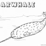 Arctic Narwhal Coloring Pages Realistic