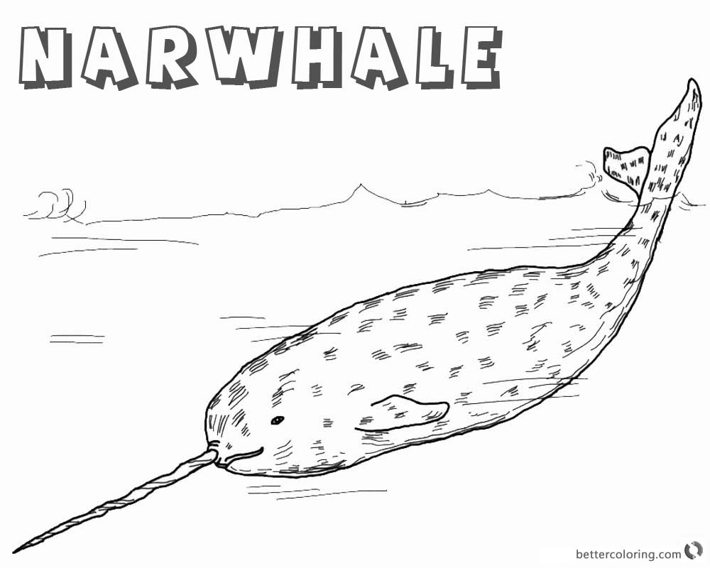 Arctic Narwhal Coloring Pages Realistic printable