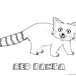Red Panda Coloring Pages Black and White Sketch