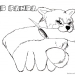 Red Panda Coloring Pages Eating Bamboo
