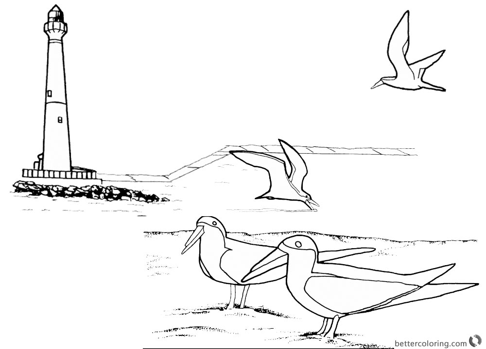 Lighthouse Coloring Pages Birds on the Beach printable for free