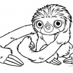 Realistic Three Toed Sloth Coloring Pages