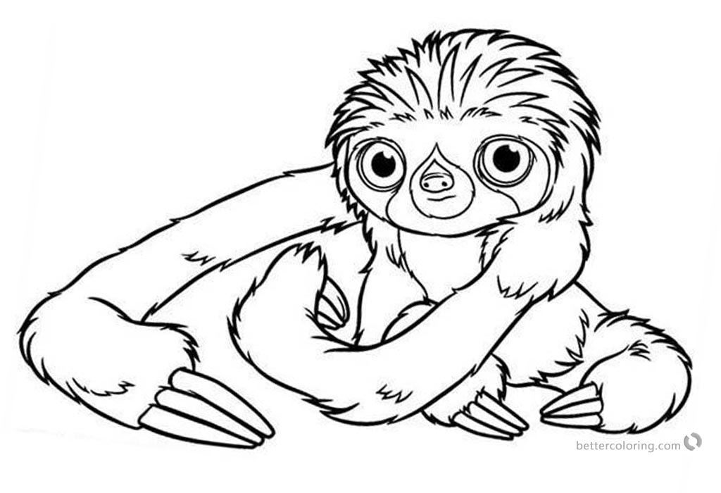 Realistic Three Toed Sloth Coloring Pages printable for free