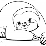 Sloth Coloring Pages Cute Sloth Have A Rest