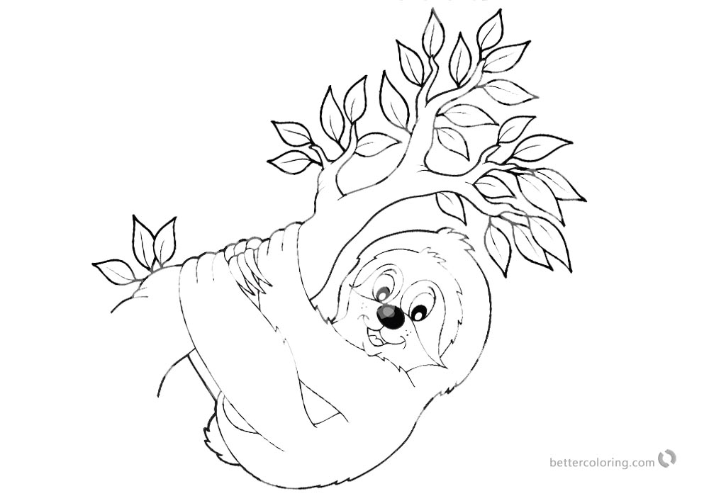 Image Result For Sloth Coloring Page