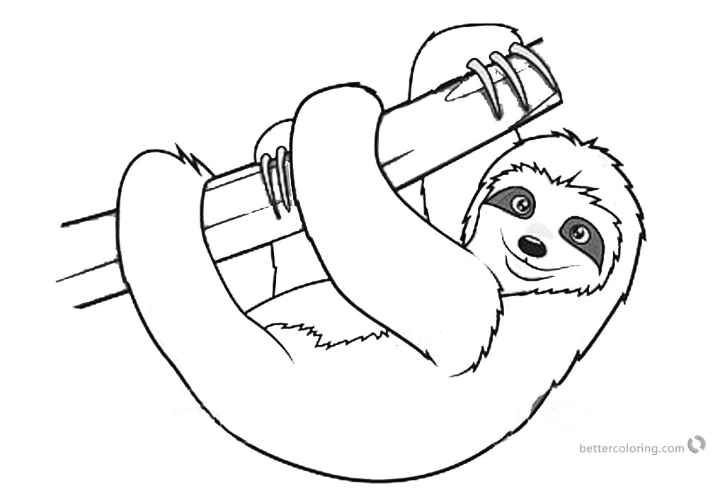 Sloth Coloring Pages Realistic Three Toed Sloth printable for free