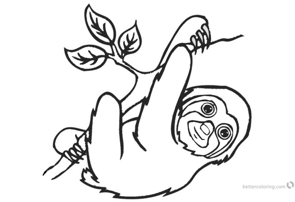 Sloth Coloring Pages Three Toed Sloth and Tree Brach Line Art printable for free
