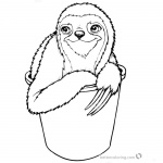 Sloth Coloring Pages Three Toed Sloth in A Bucket