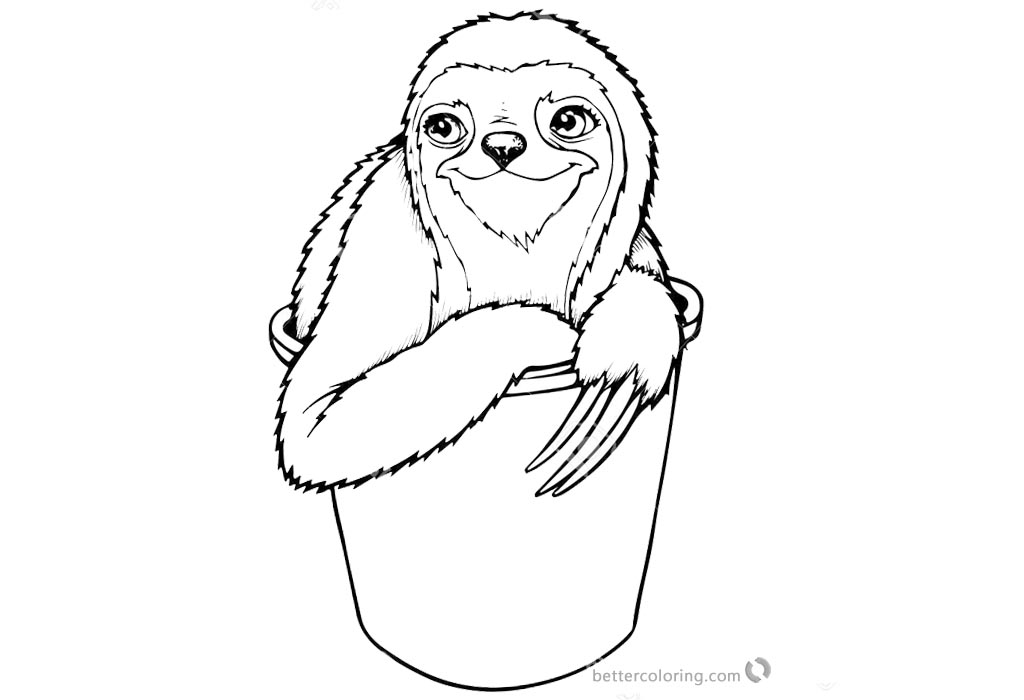 Sloth Coloring Pages Three Toed Sloth in A Bucket printable for free