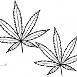Weed Leaf Coloring Pages Marijuana Leaf