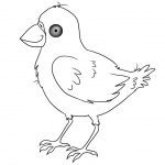 Birds Coloring Pages Black and White