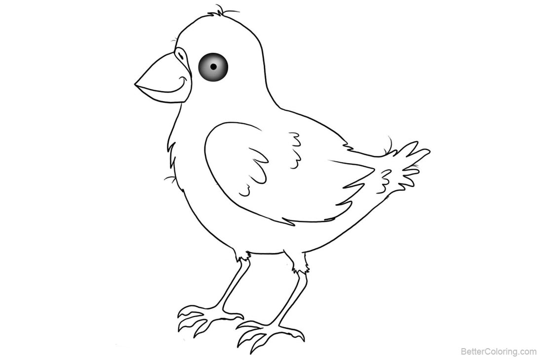 Birds Coloring Pages Black and White printable for free