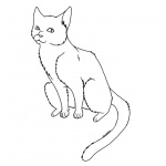 Cat Coloring Pages Clipart