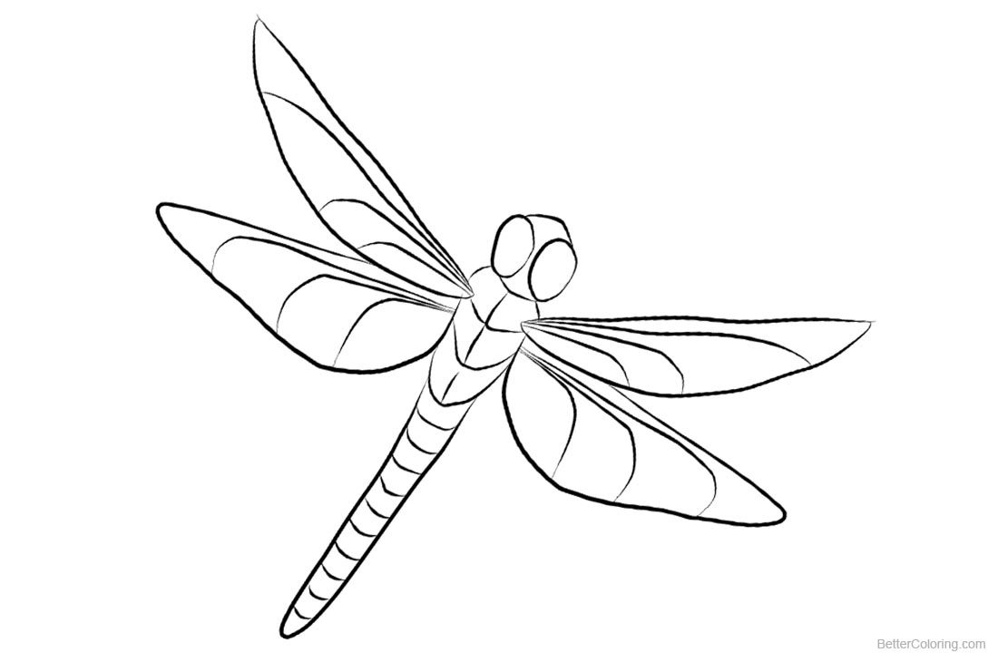 Dragonfly Coloring Pages Clipart - Free Printable Coloring Pages