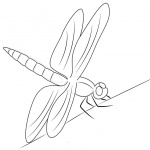 Dragonfly Coloring Pages Line Art