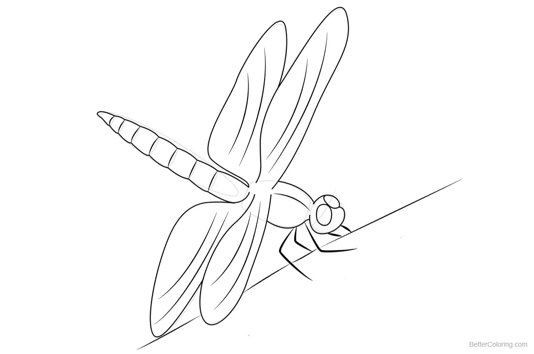 Dragonfly Coloring Pages Line Art printable for free