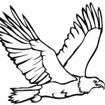 Eagle Coloring Pages Flying Eagle Lineart