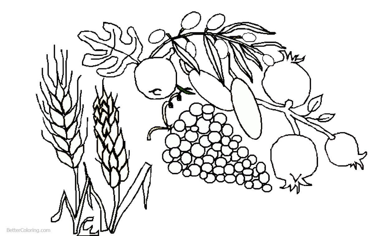 Foods of Shavuot Coloring Pages printable for free