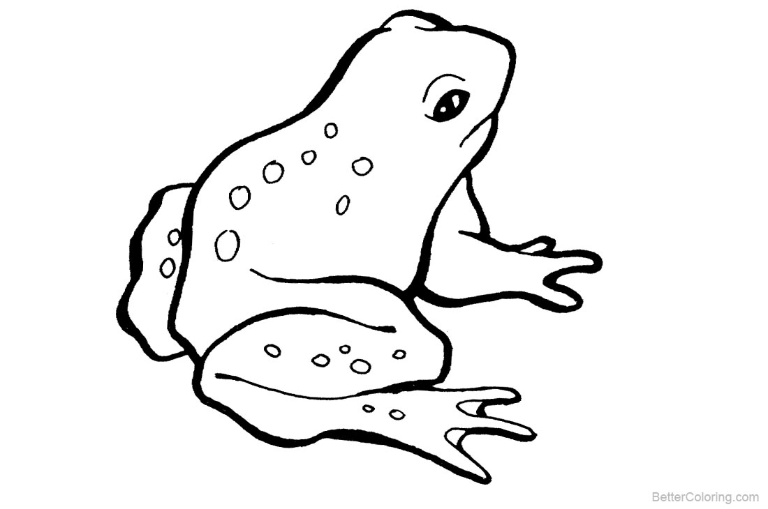 Frog Coloring Pages printable for free