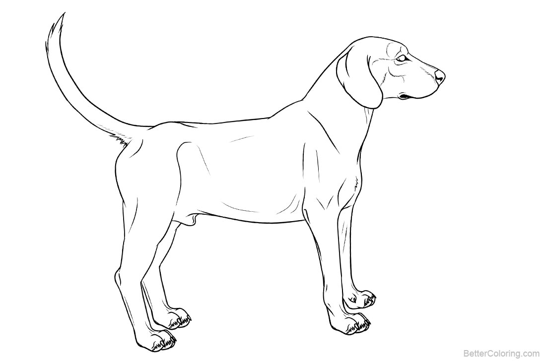 Hound Dog Coloring Pages printable for free