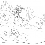 Pond Coloring Pages Black and White Drawing