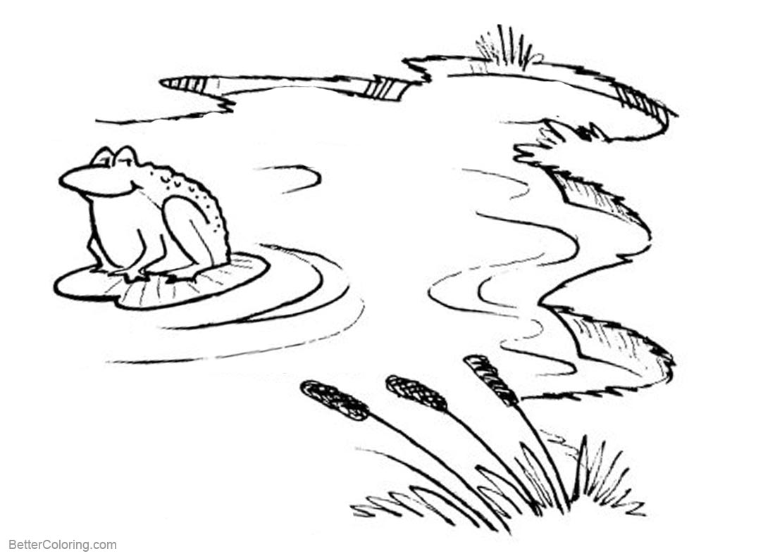 Pond Coloring Pages Cattails and Frog printable for free