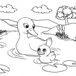 Pond Coloring Pages Ducks' Life in the Pond