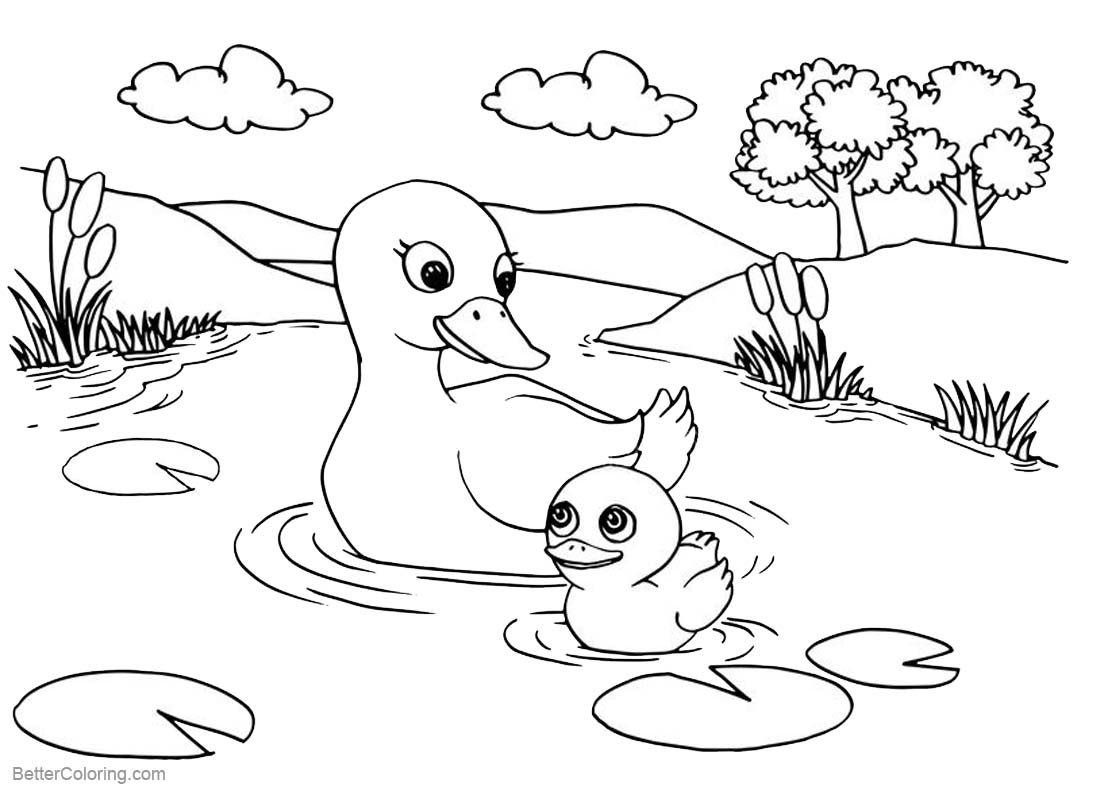 Pond Coloring Pages Ducks' Life in the Pond printable for free
