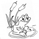 Pond Coloring Pages Frog Sit on the Water Lily