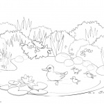 Pond Coloring Pages Happy Ducks Swimming
