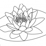 Pond Coloring Pages Lily Pad Flower