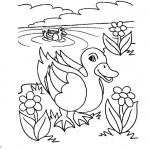 Pond Coloring Pages Line Art