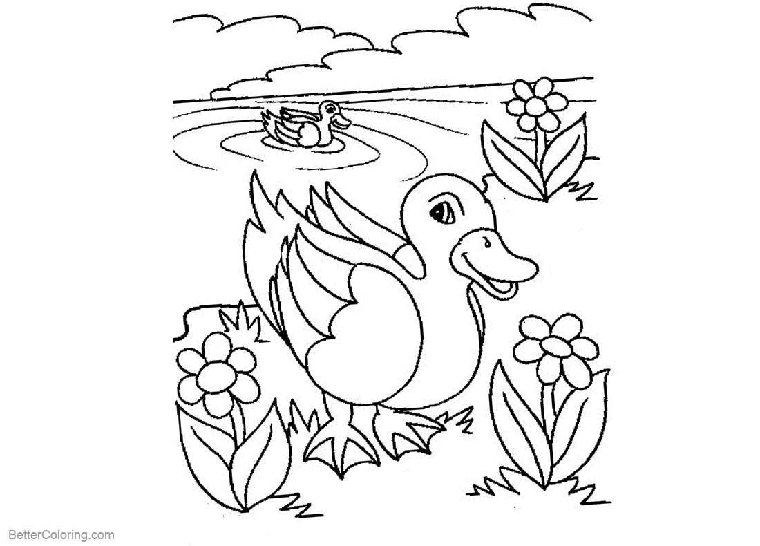 Pond Coloring Pages Line Art printable for free