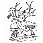 Pond Coloring Pages Lineart