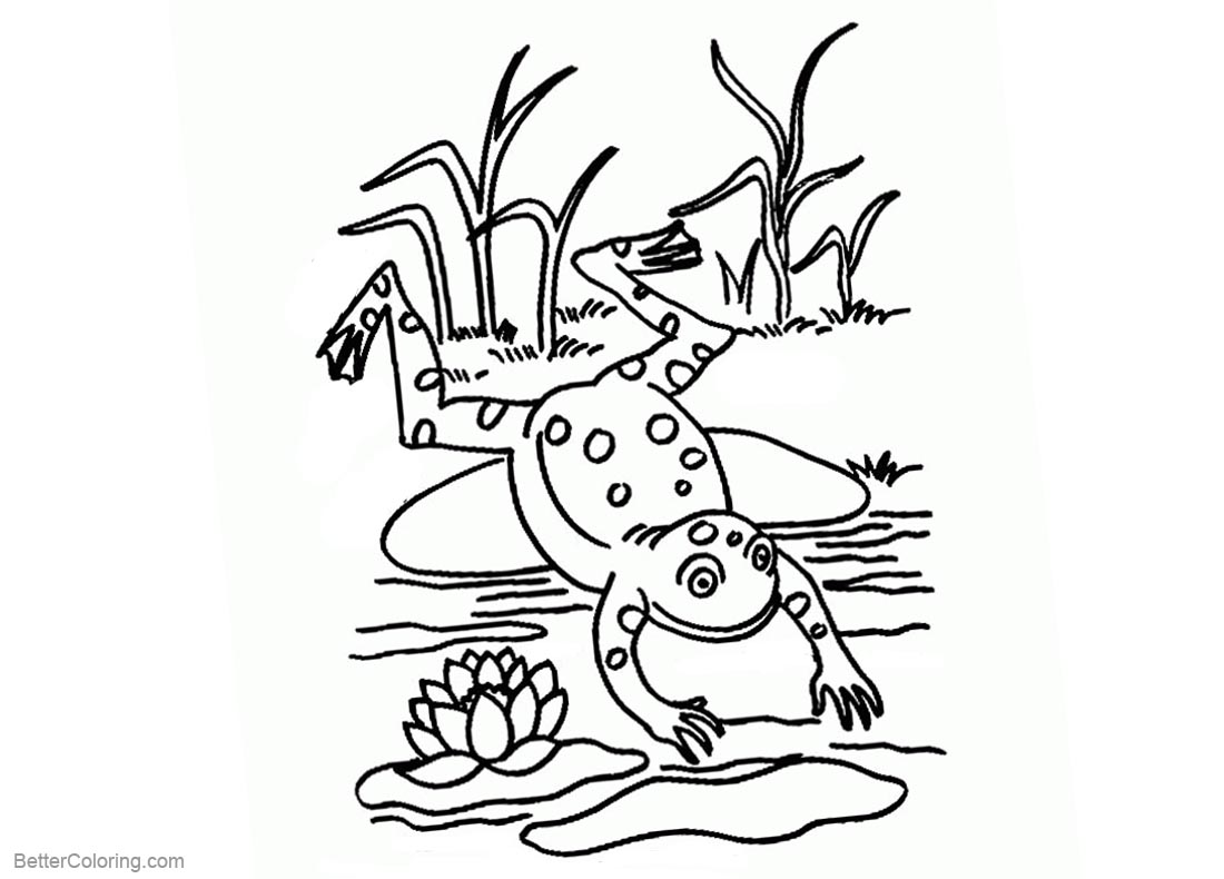 Pond Coloring Pages Lineart printable for free