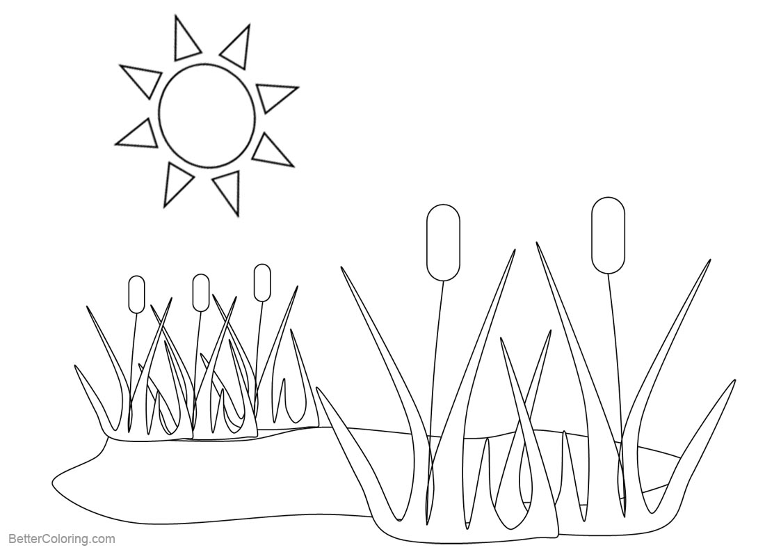 Pond Coloring Pages Plants and Sunshine printable for free