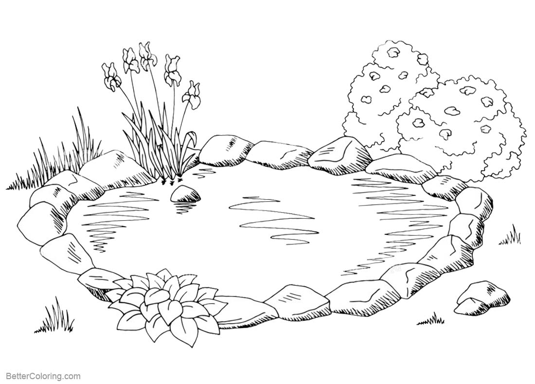 Pond Coloring Pages Sketch - Free Printable Coloring Pages