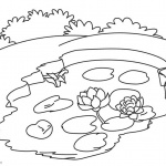 Pond Coloring Pages Small Pond with Water Lily Flowers
