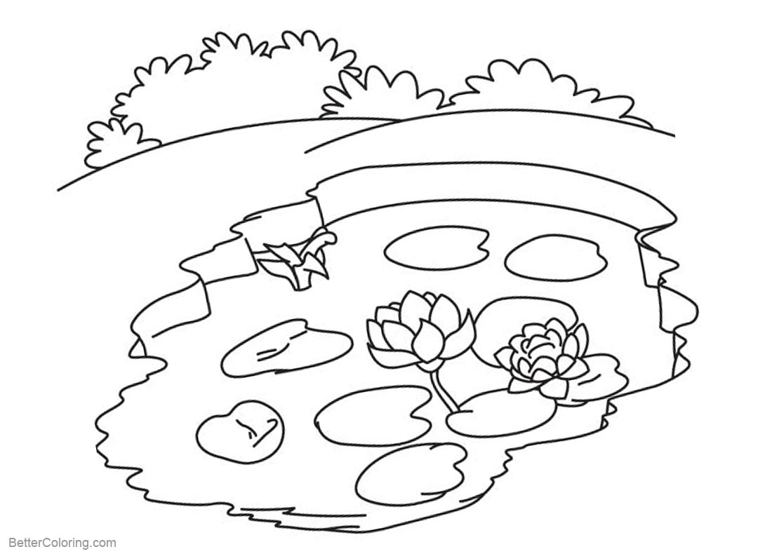 Pond Coloring Pages Small Pond