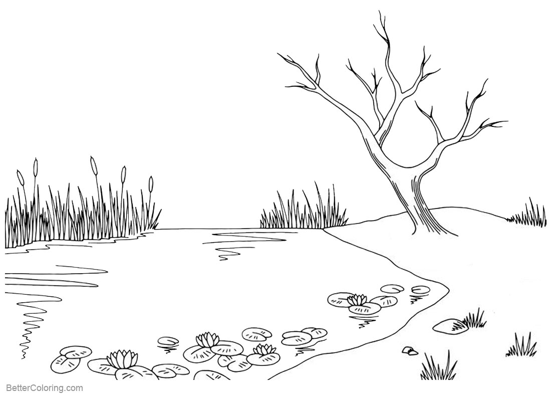 Pond Coloring Pages Tree Lily Pad and Cattails - Free Printable ...