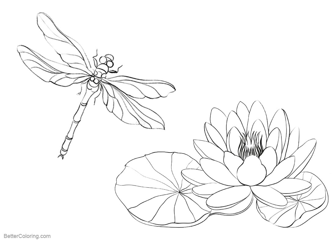 Pond Coloring Pages Water Lily and Dragonfly - Free Printable ...