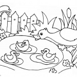 Pond Life Coloring Pages