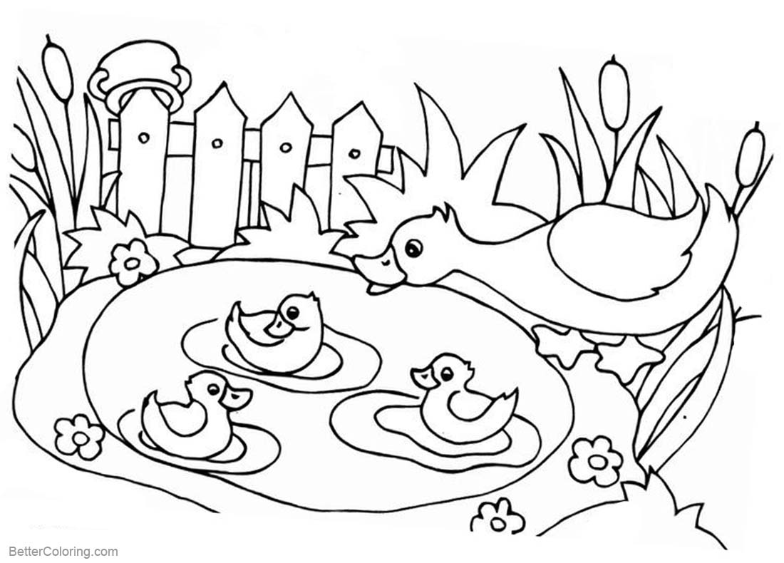 free pond coloring pages | Pond Life Coloring Pages - Free Printable Coloring Pages