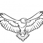 Soaring Eagle Coloring Pages Line Art