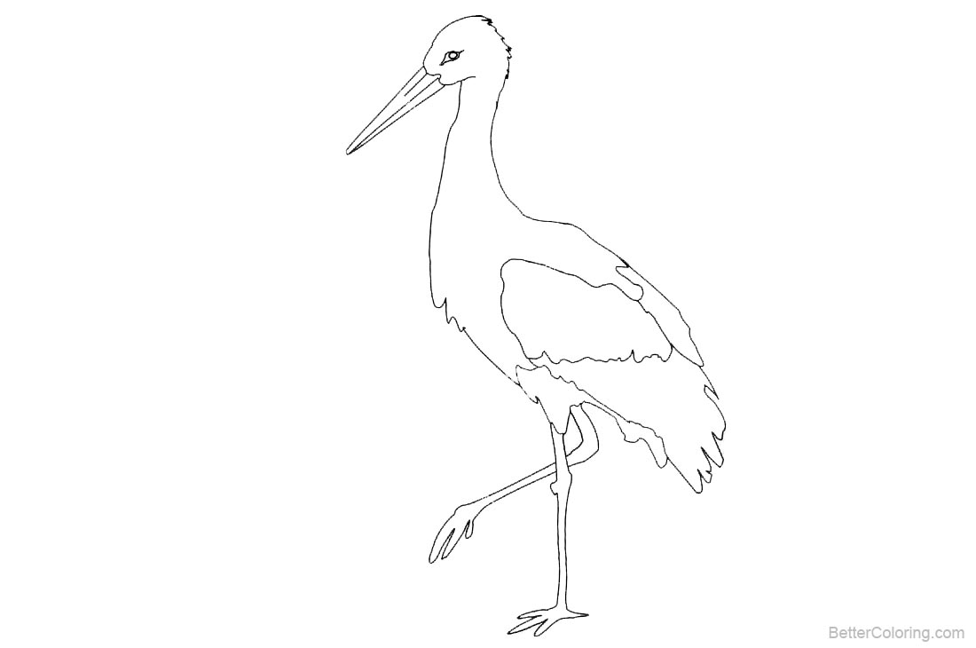 Stork Coloring Pages printable for free