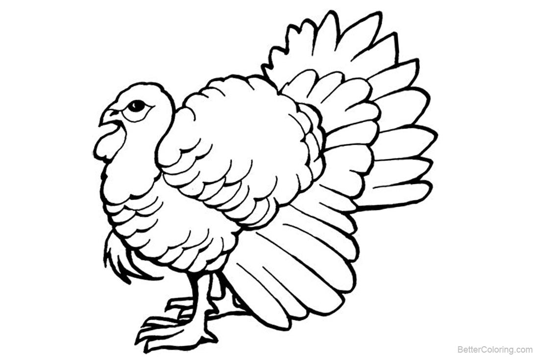 Turkey Coloring Pages Line Art printable for free