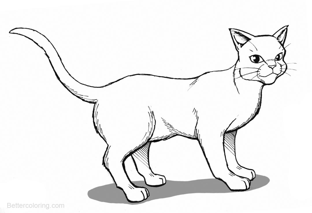 Fantastic Warrior Cats Coloring Pages Embellishment - Coloring Paper ...