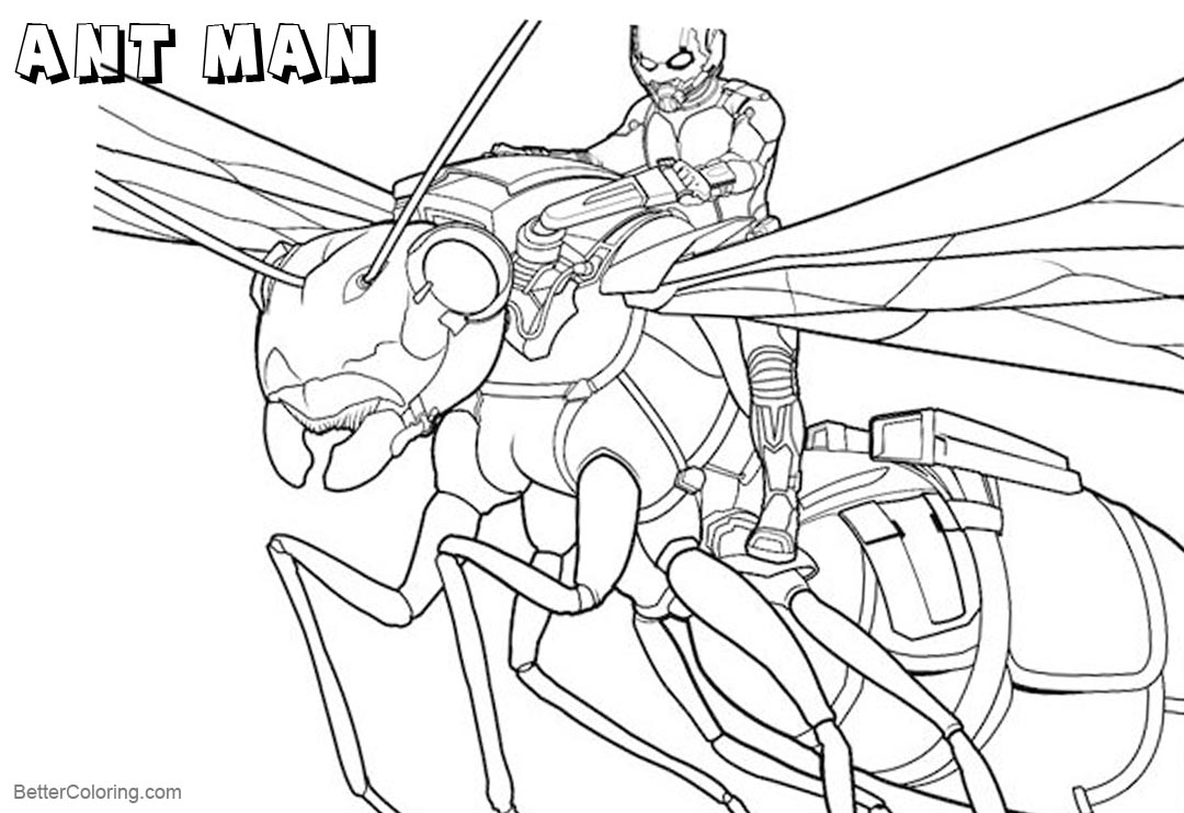 image about Ant Printable known as Ant Gentleman Coloring Webpages Traveling upon An Ant - Absolutely free Printable
