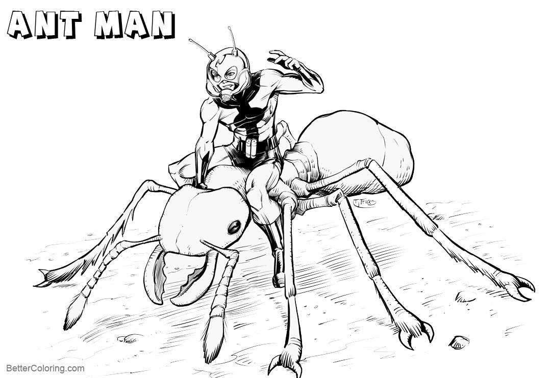 Free Ant Man Coloring Pages by guinnessyde inks willpetrey printable