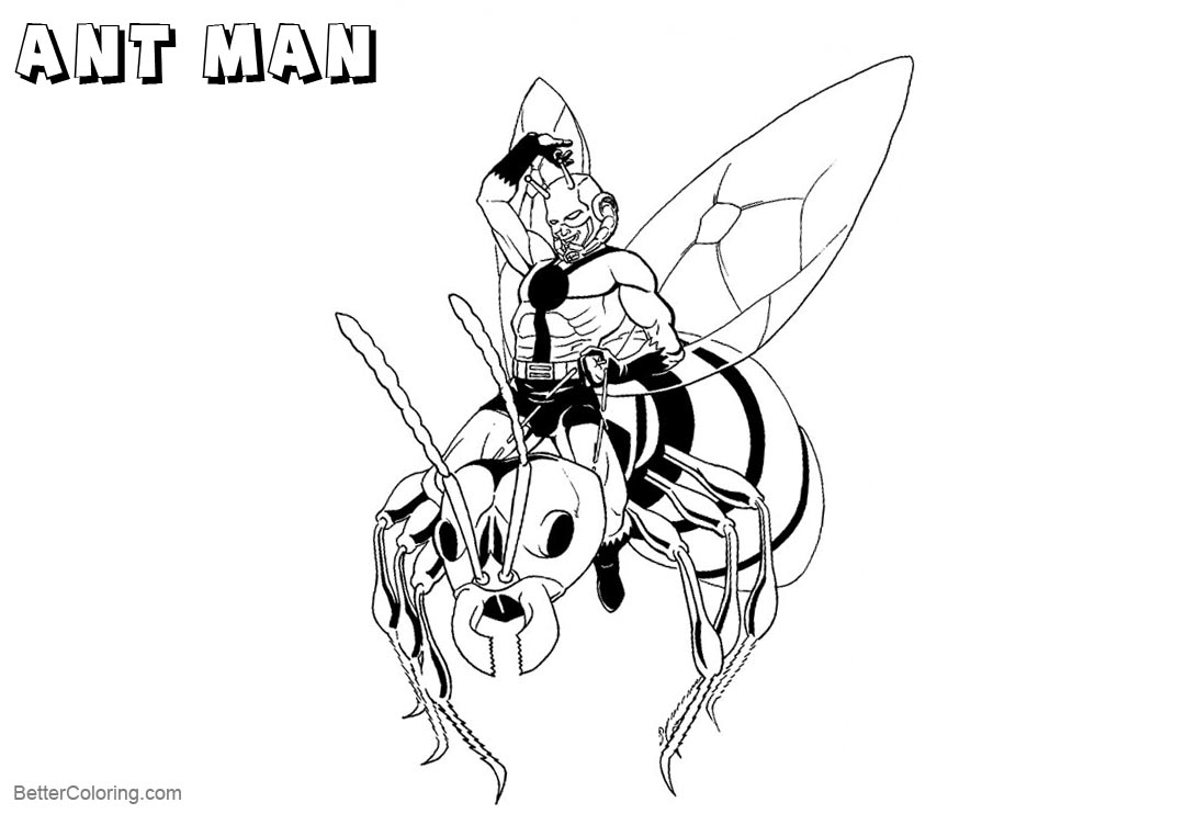 Ant Man from Marvel Characters